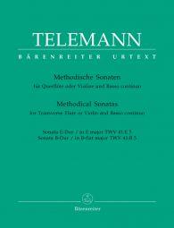 Methodical Sonatas for Violin (Flute) and Bc: Volume 5