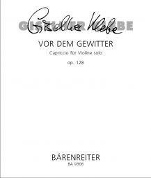 Vor dem Gewitter Op.128 for Violin Solo
