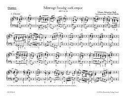Cantata No.36: Schwingt freudig euch empor (BWV 36) (Organ)